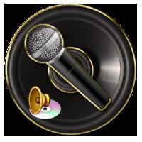 ضبط صدا از کانالهای صوتی مختلف