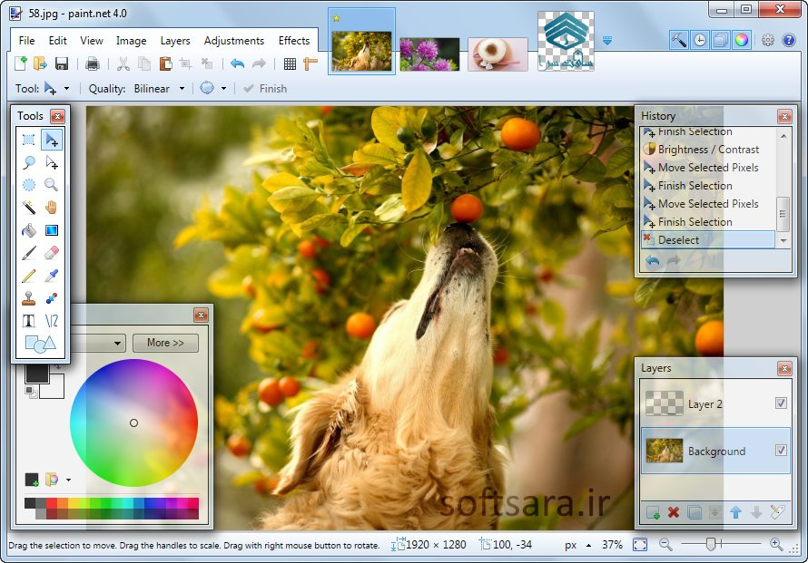 دانلود نرم افزار Paint.NET