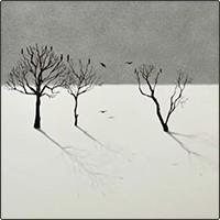ترسیم یک نقاشی سه بعدی ساده از درختان