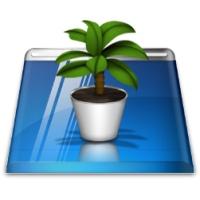 کاشت و نگهداری از گیاهان بر روی میزکار
