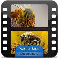 مستند زنبورهای جنگجو با دوبله فارسی