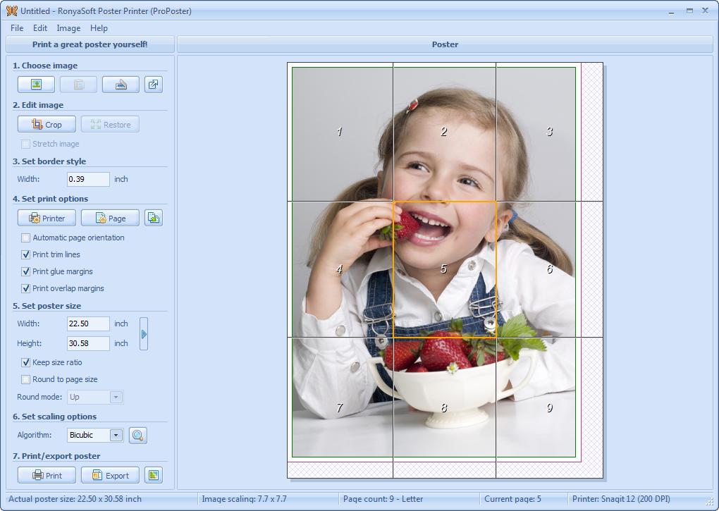 دانلود نرم افزار RonyaSoft Poster Printer
