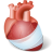 Visible Body Human Anatomy Atlas v7.4.01