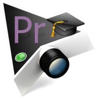 آموزش سازماندهی فایلها در Premiere