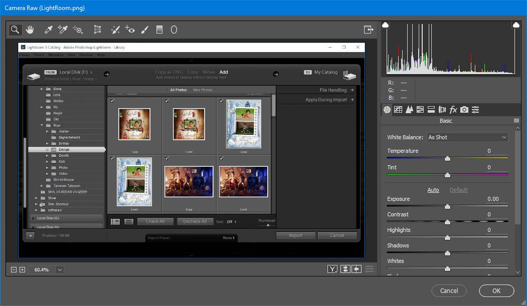 دانلود نرم افزار Adobe Camera Raw